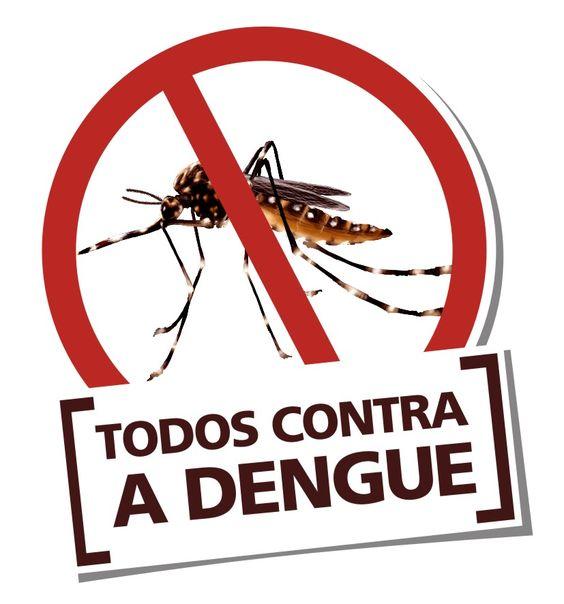 Dengue - Dicas, Sintomas e Tratamento -2