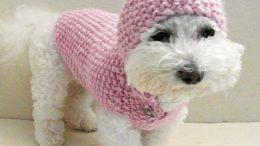 Como fazer roupa para cachorro de crochê