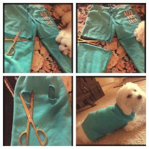 Como fazer roupa para cachorro calça velha