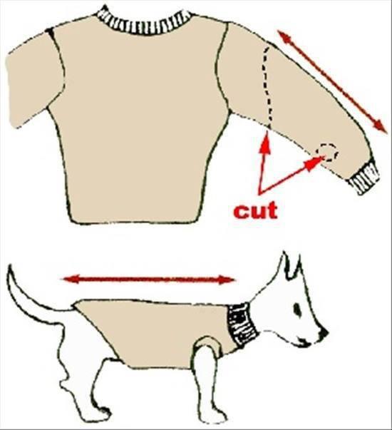 Como fazer roupa para cachorro braço de blusa