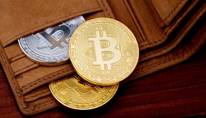 Saiba tudo sobre carteiras para bitcoins