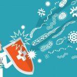 Como aumentar a Imunidade e se Prevenir Contra os Vírus