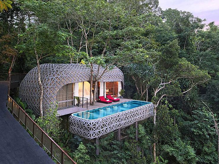 casa na árvore com piscina suspensa