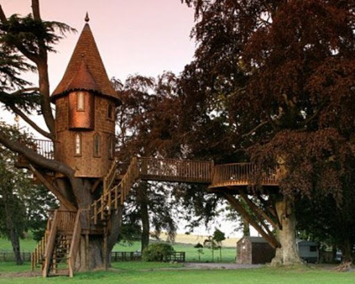 fotos de casa na árvore estilo castelo