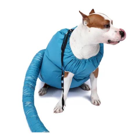 Secador para Pet - Como Funciona? Veja Fotos